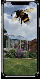 Bumblebee Conservation Trust App