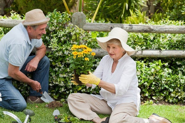 Older person enjoying her garden